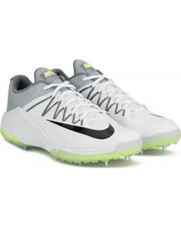 Nike Domain 2 Unisex Cricket Shoe