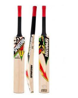 Spartan 2014 CG Thunder Cricket Bat