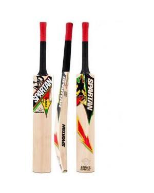 Spartan 2014 CG Thunder Cricket Bat