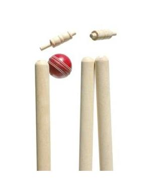 Lukeys Test Stumps and Bails